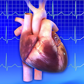 Ar Heart