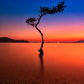 by Charliemagne Unggay - Landscapes Waterscapes ( landscape, beach, , blue, orange. color )