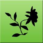 Herbolaria y Fitoterapia icon