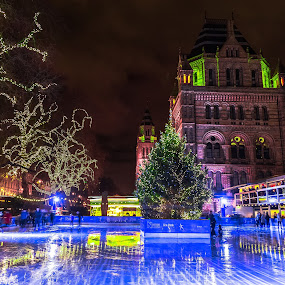 Skating in London by Stephen Bridger - Public Holidays Christmas ( england, uk, london, great britain, ice rink, skating rink, christmas, holidays, christmas tree, skating, united kingdom, britain )