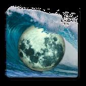 Tide Guide