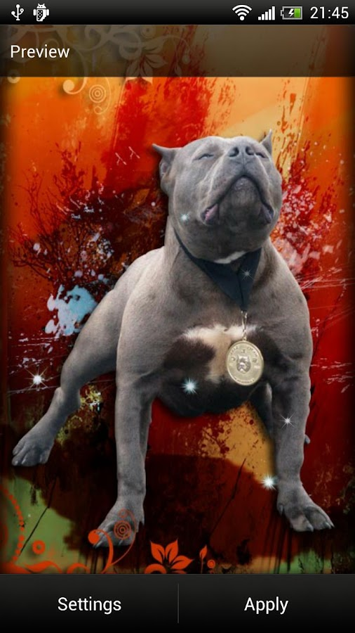 Pitbull Dog Live Wallpaper - screenshot