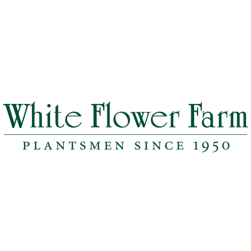 White Flower Farm Catalogs 書籍 App LOGO-APP試玩