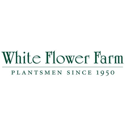White Flower Farm Catalogs 書籍 App LOGO-APP試玩