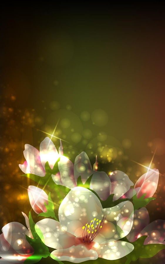 daisies wallpaper iphone
