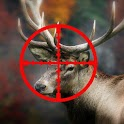 Deer Challenge - 3D Hunting icon