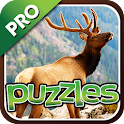 Forest Animal Puzzles Pro icon