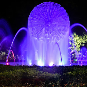 Night Fountain from Botosani by Ovidiu Porohniuc - City,  Street & Park  Fountains ( park, fountains, botosani, night, city,  )