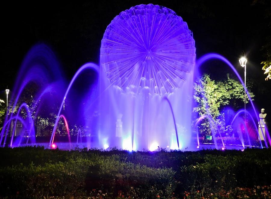Night Fountain from Botosani by Ovidiu Porohniuc - City,  Street & Park  Fountains ( park, fountains, botosani, night, city,  )