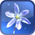 Blue Blossom Live Wallpaper icon