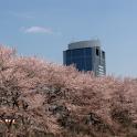案道路 厚木 準備01号 – 2010 春 – logo