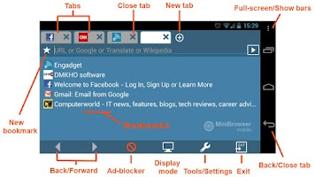Screenshot of MiniBrowser PRO