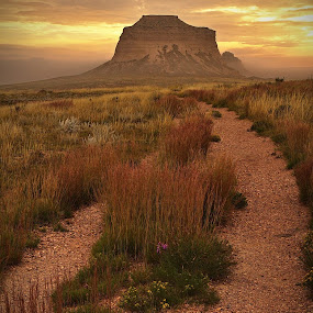 Pawnee Butte's N. Co. by Johnny Gomez - Landscapes Prairies, Meadows & Fields