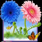 Sky Flowers HD icon