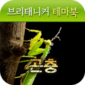 브리태니커 테마북-곤충