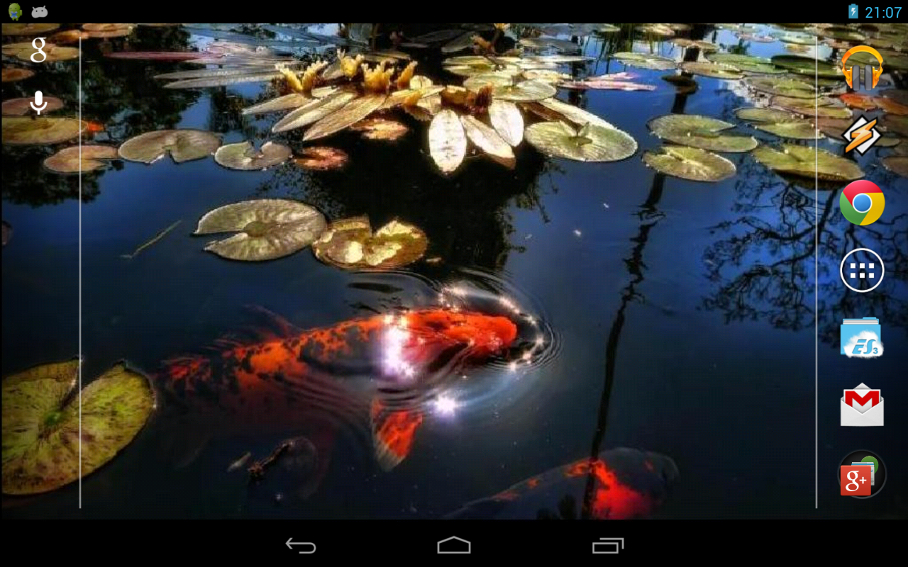 Koi fish in the pond android apps on google play for Koi pond game online