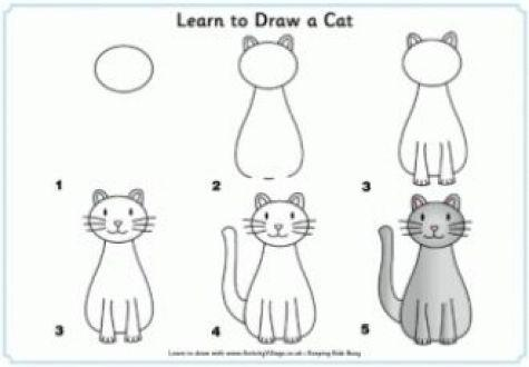 Learn How To Draw A Cat