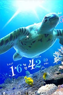Sea Turtle LiveWallpaper Trial - screenshot thumbnail