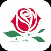 Willa Róż - Międzygórze