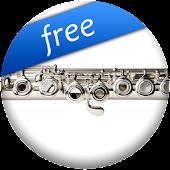 Pro Flute Fingerings Free