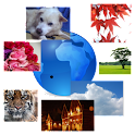 Image search & show Widget logo