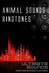 Animals Ringtones