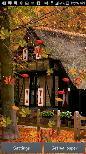 【免費個人化App】Autumn Maple Live Wallpaper-APP點子