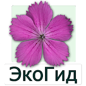 EcoGuide: Russian Wild Flowers