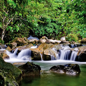 Waterfall by Bastian M - Landscapes Waterscapes ( water, green, waterfall, stone, river )