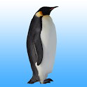 Flying penguin icon