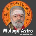 Mulugu Astro - Panchangam 2017 icon