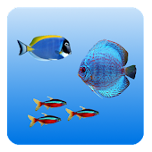 Fishes Live Wallpaper