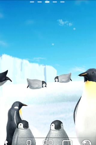 Penguin Live Wallpaper Trial - screenshot