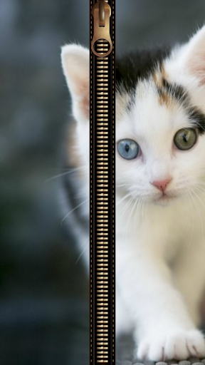 貓拉鍊鎖屏
