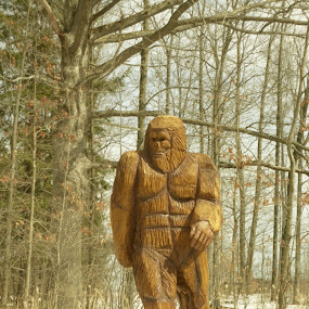 Hand Carved Wooden Bigfoot by Annette Long-Soller - Novices Only Objects & Still Life ( urban, snow, wooden statue, hand carved, woods )