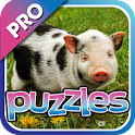 Baby Animal Puzzles Pro icon