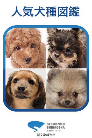 人気犬種図鑑