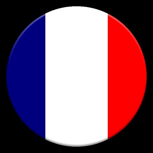 Ligue 1 Standings