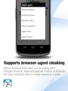 InBrowser - Incognito Browsing- screenshot thumbnail