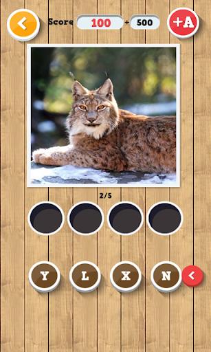 무엇을 추측 동물