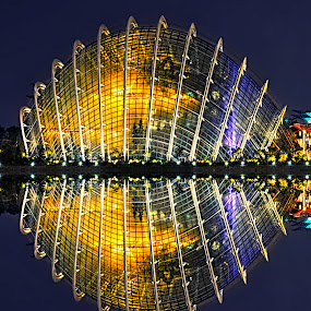 Cloud Forest by Kafoor Sammil - Buildings & Architecture Architectural Detail ( cloud forest, singapore )