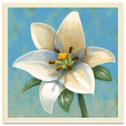 Inner Garden 2.13 APK for Android