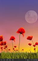 Screenshot of Poppy Field Free