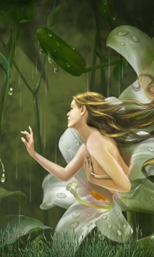 Fairy Magical Rain-Forest LWP