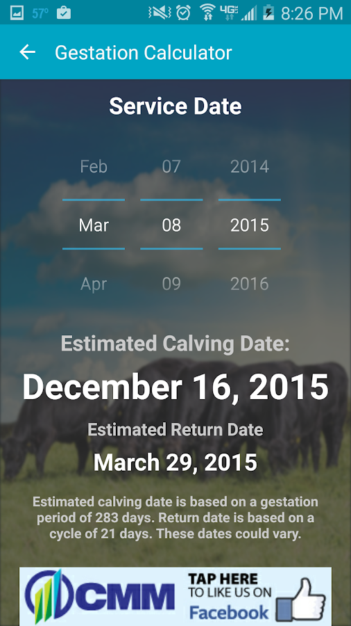 Cattle Market Mobile- screenshot