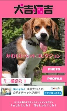 犬吉猫吉かわいいペットコレクション1のおすすめ画像1