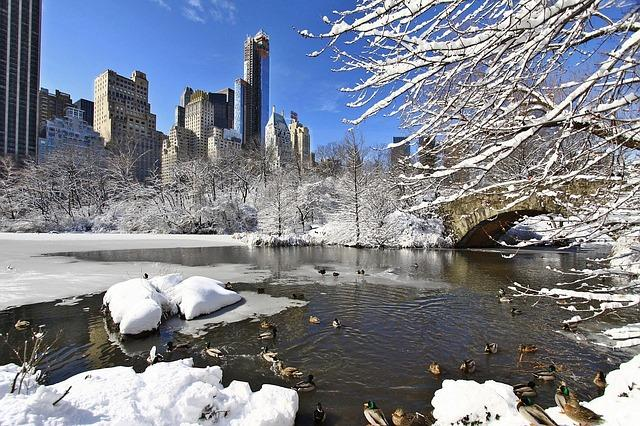 New York City Snow Wallpaper Android App Screenshot
