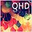 Best Wallpapers QHD logo