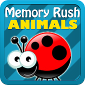 Animals Memory Rush Gold Edit.