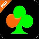 BJ Bridge (BriJ) Pro Version icon